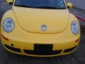 thumbs_Yellow-Beetle-After-2