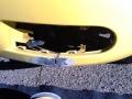 thumbs_Yellow-Beetle-Before-1